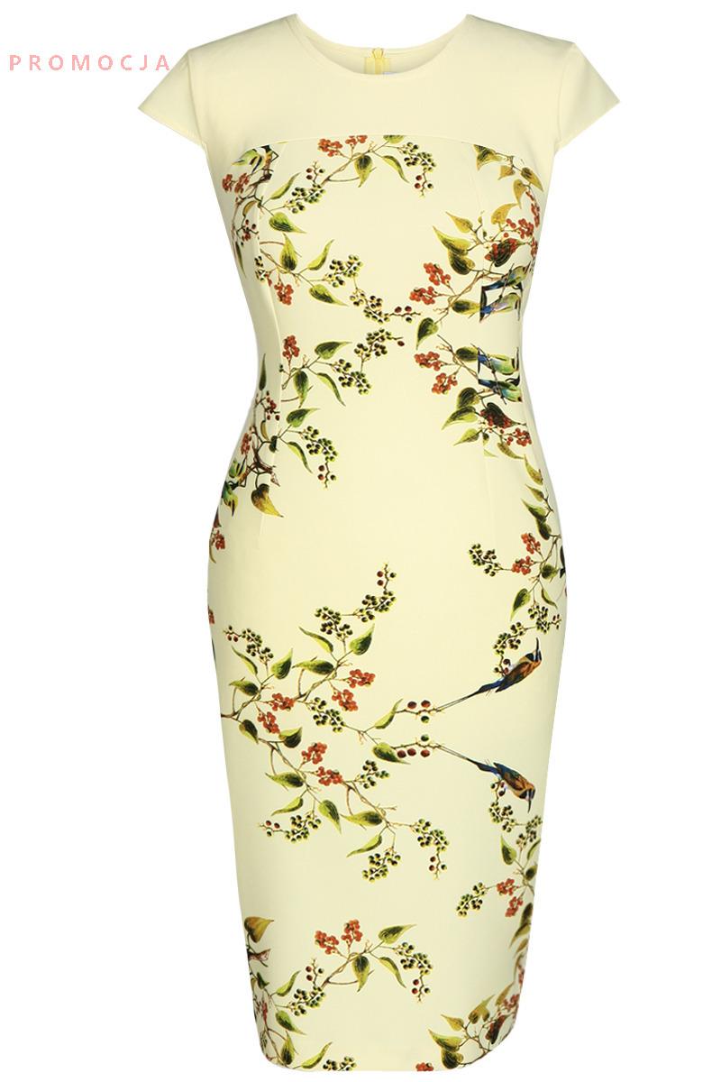 Denní šaty  model 49823 Fokus Fashion